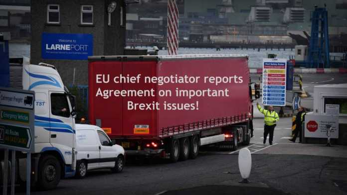 Eu Chief Negotiator Reports Agreement On Important Brexit Issues