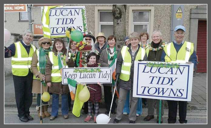 Tidy Town Committees in South Dublin County