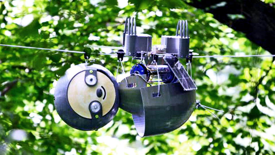 This Cute Robot Sloth Began His Mission