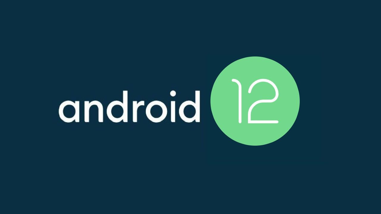 Android 12 is available: the timing of the release of the update