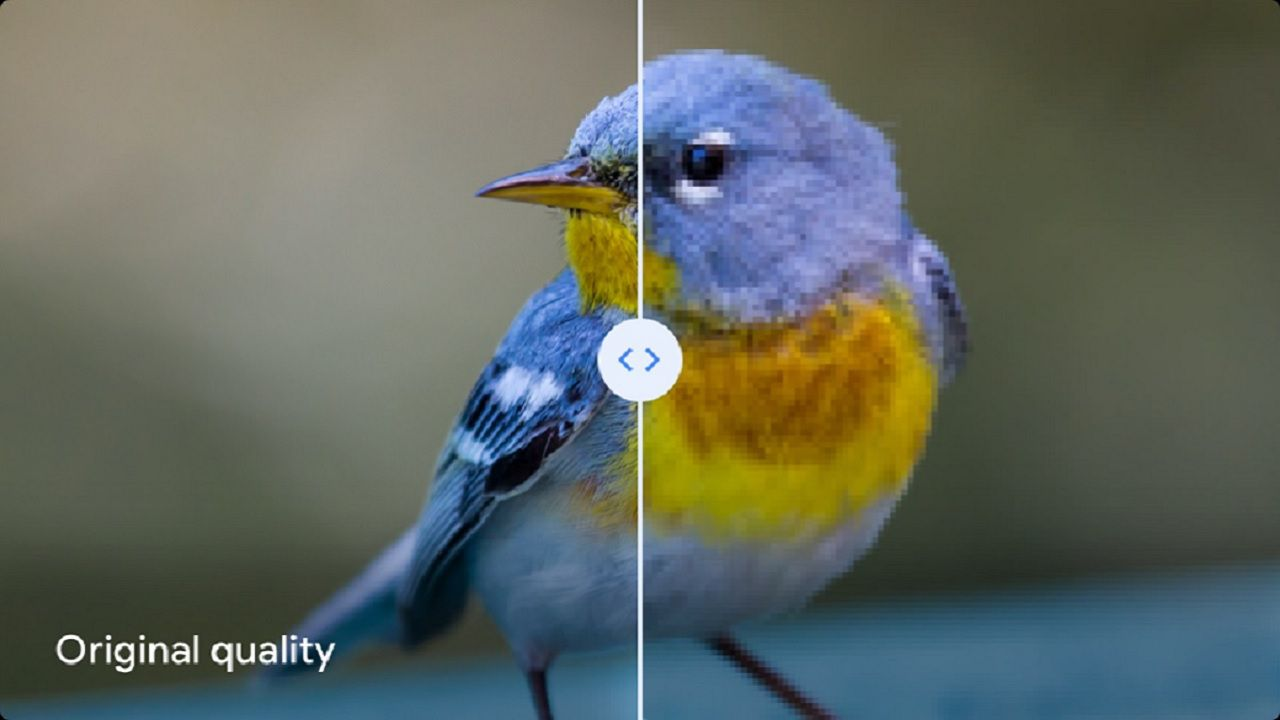 Google warns users: do not use this image compression