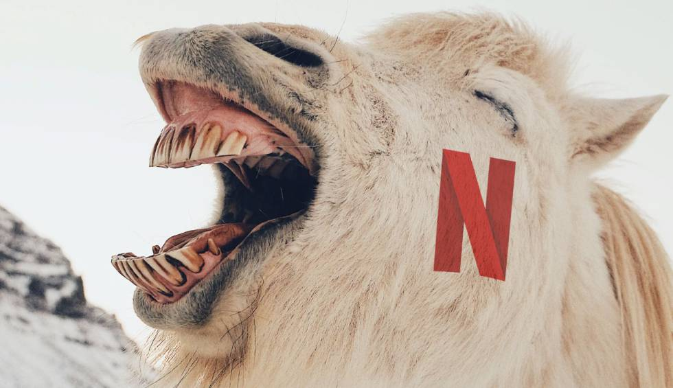 Netflix premieres its 'quick laughs', do you know what they are and where can you see them?