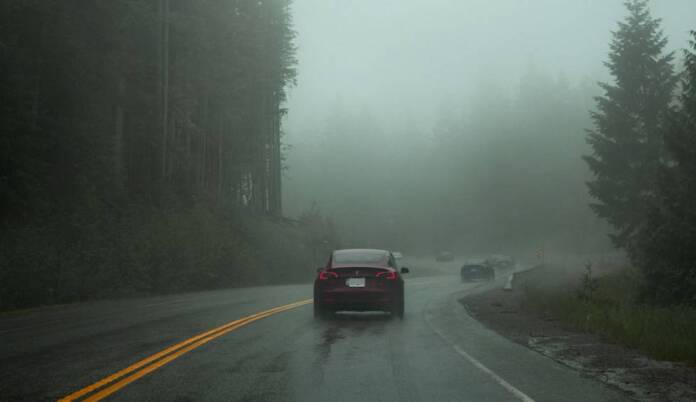 This is how well Tesla's autonomous driving works in foggy, low-visibility conditions